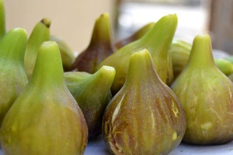 Figs Glorious Figs