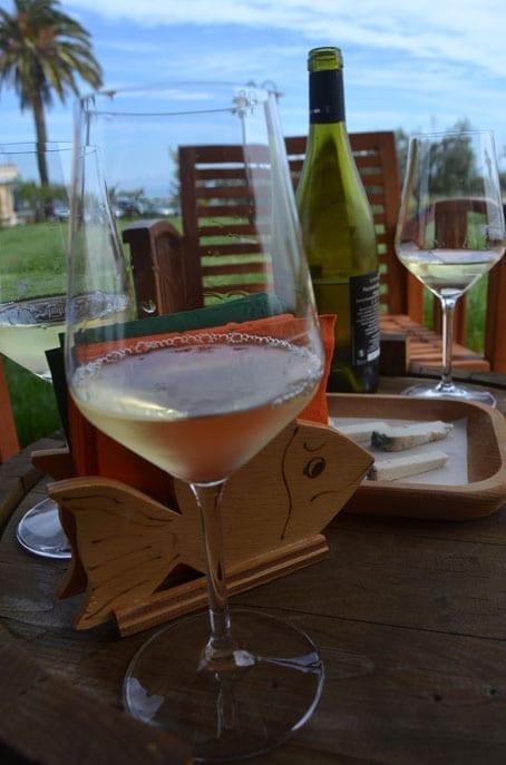 Fontefico Puro Vino Pecorino